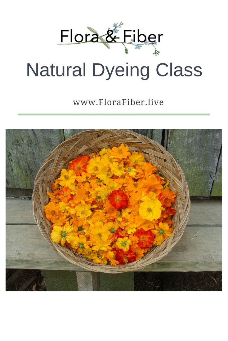 Natural Dyeing Class link