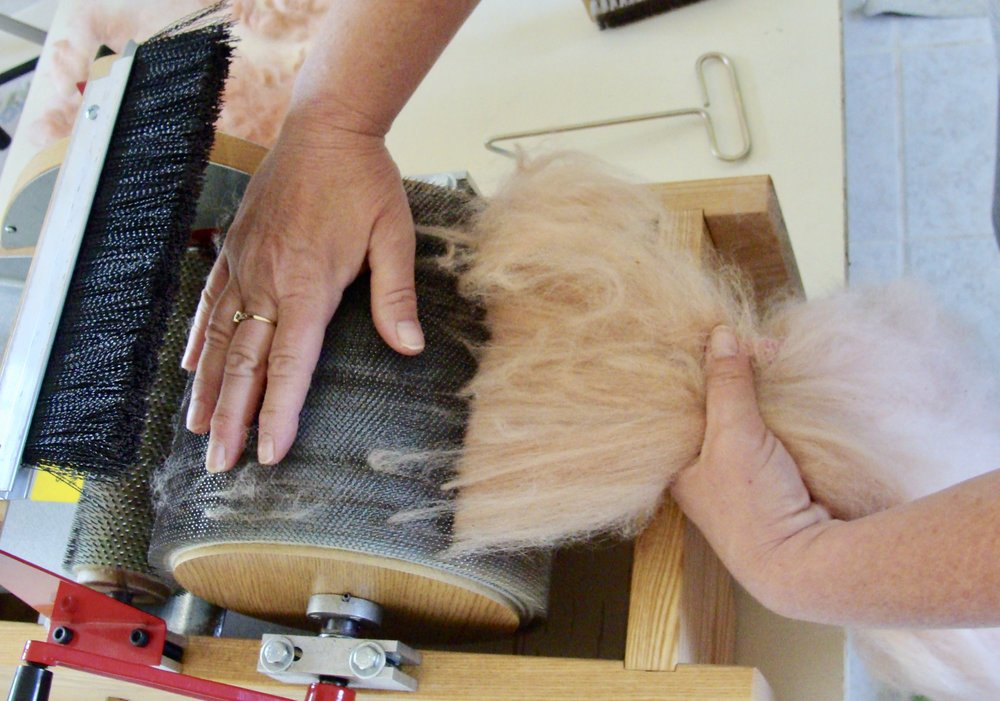 hand-dyed alpaca fleece and drum carder removing batt