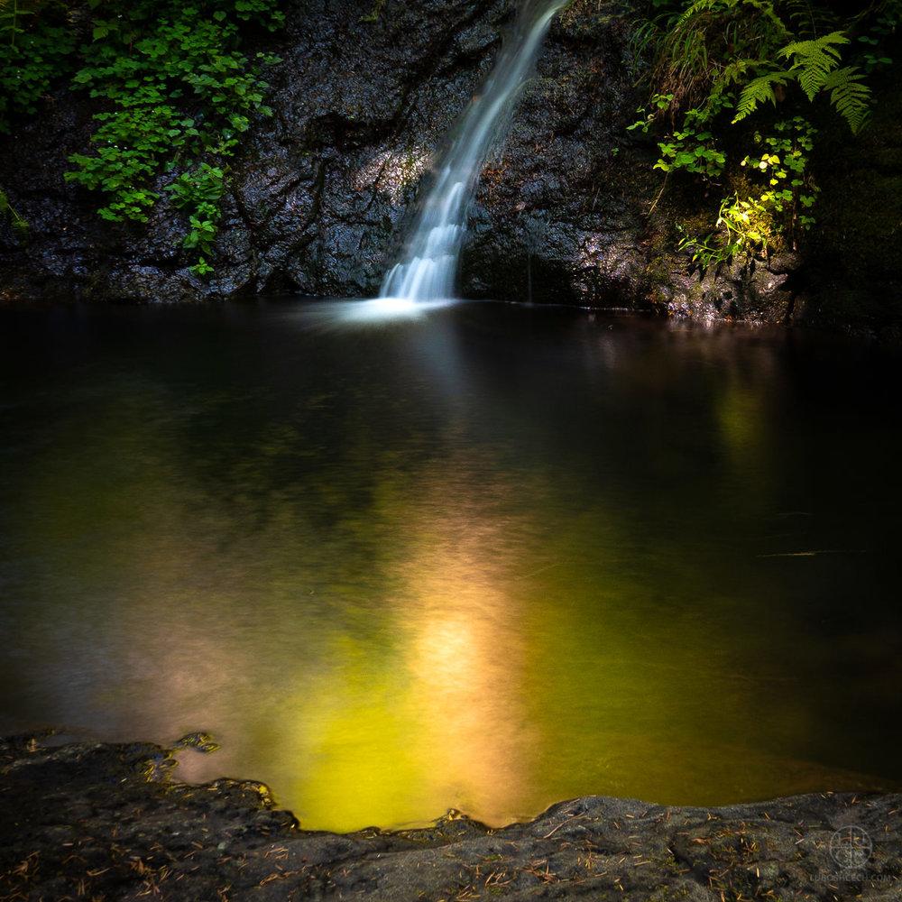 d-creek-03979-2.jpg