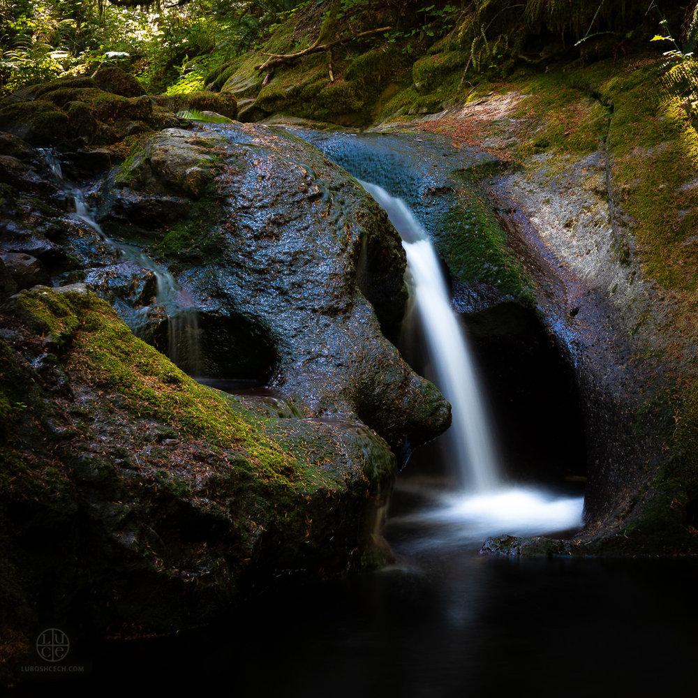 d-creek-03996.jpg