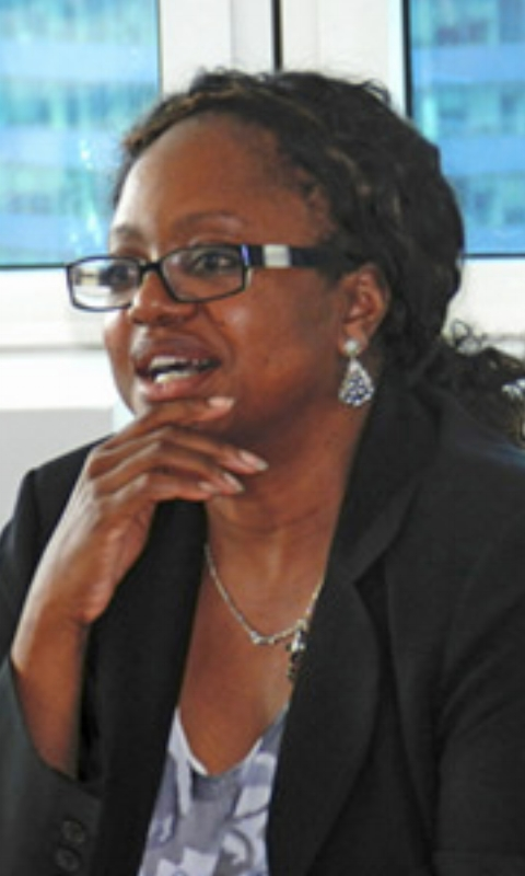 AMB. BONNIE JENKINS - Founder and President of the nonprofit organization Women of Color Advancing Peace, Security, and Conflict Transformation and former Coordinator for Threat Reduction Programs at the International Security and Nonproliferation Bureau at the U.S. Department of State