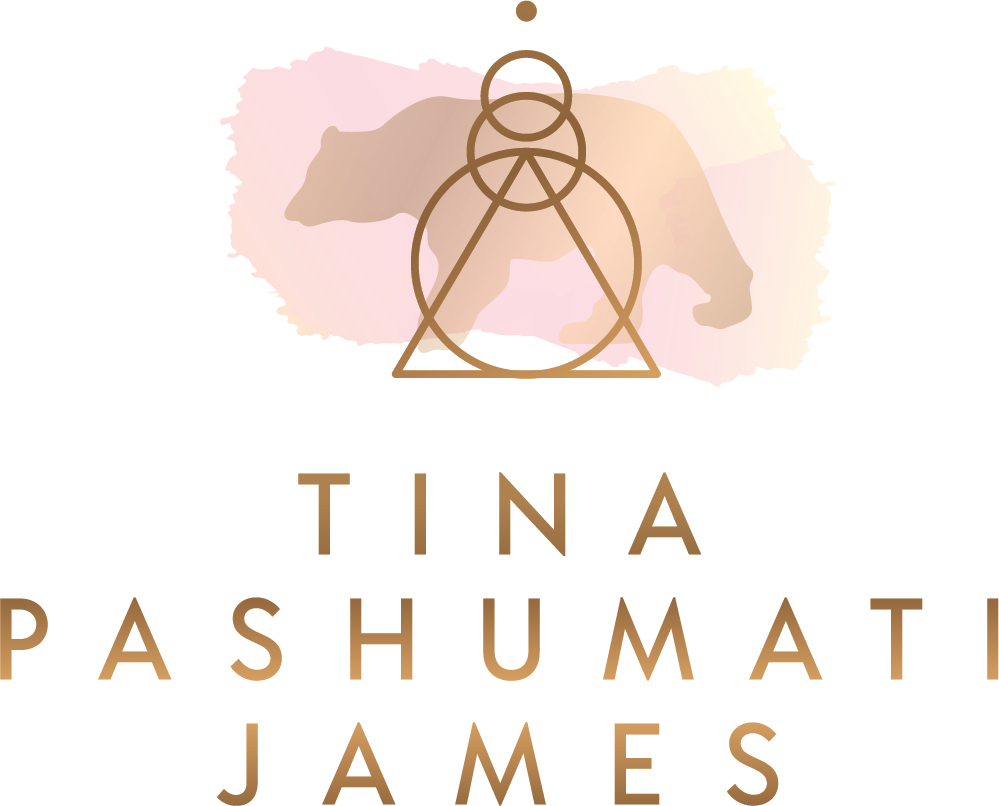 vinyasa vayus jivamukti and ashtanga workshop tina pashumati