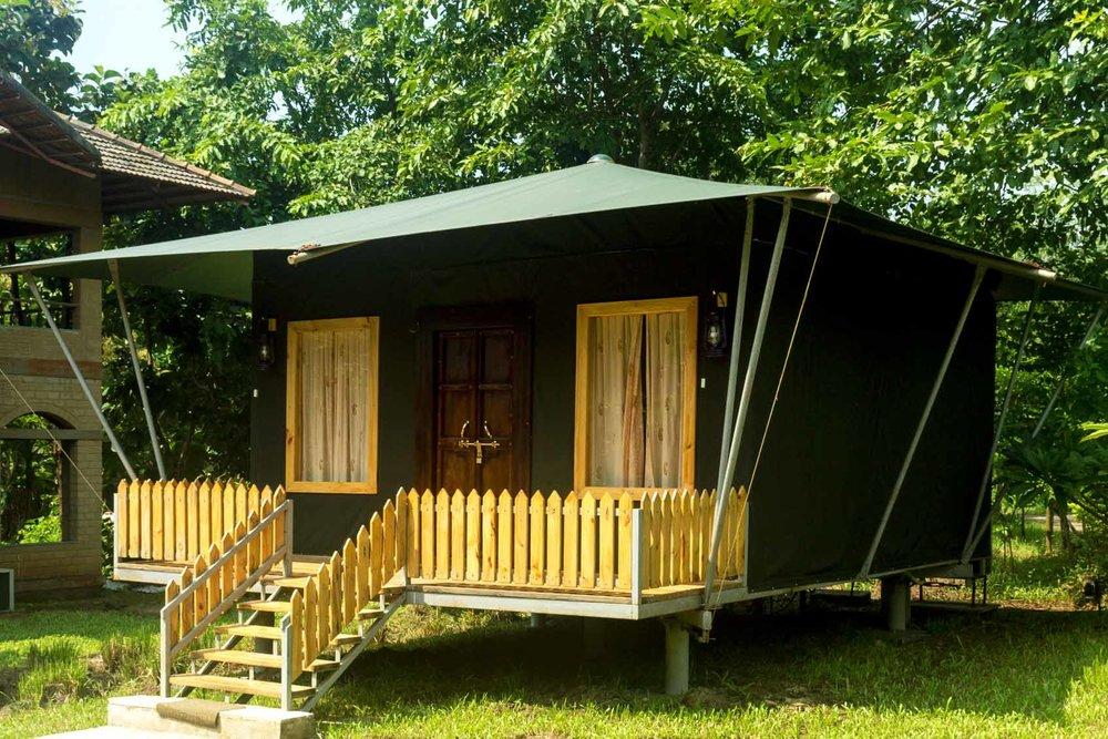 lux-jungle-cabin-1694x1130.jpg