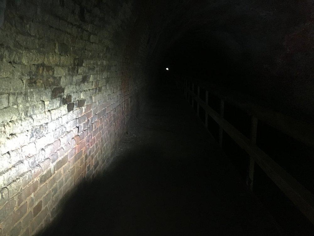 Inside the Paw Paw Tunnel, slightly dark!