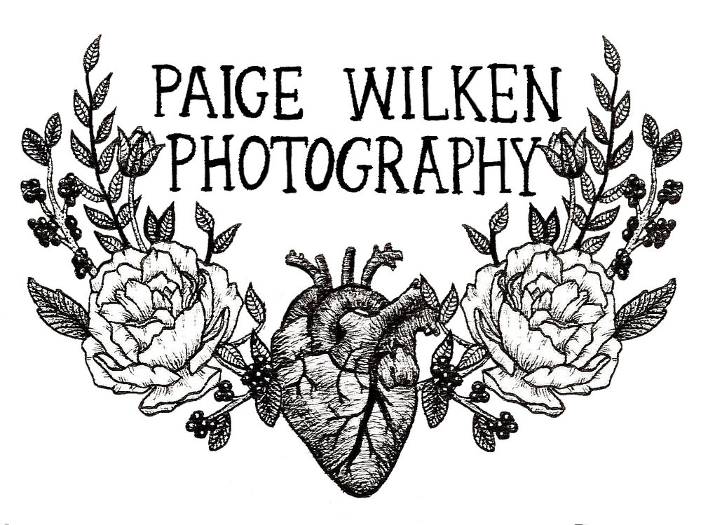 Paige Wilken Photography