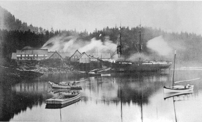 Salmon cannery at Loring, Alaska in 1897. Reproduced from  The Salmon and Salmon Fisheries of Alaska  by Jefferson F. Moser, 1899  http://www.alaskool.org/projects/traditionalife/fishtrap/FISHTRAP.htm