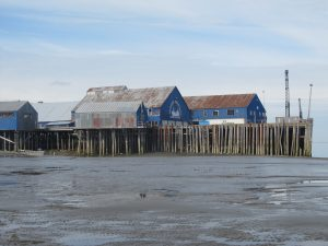 Diamond NN cannery at South Naknek, Bristol Bay.  http://alaskahistoricalsociety.org/category/alaska-canneries/