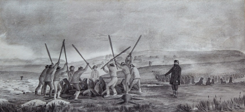 Russian merchants watch as Alaska Natives hunt sea lions.  From https://www.nlm.nih.gov/nativevoices/timeline/636.html?tribe=Aleut/Unangan