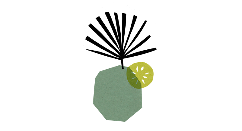 15_green2.png