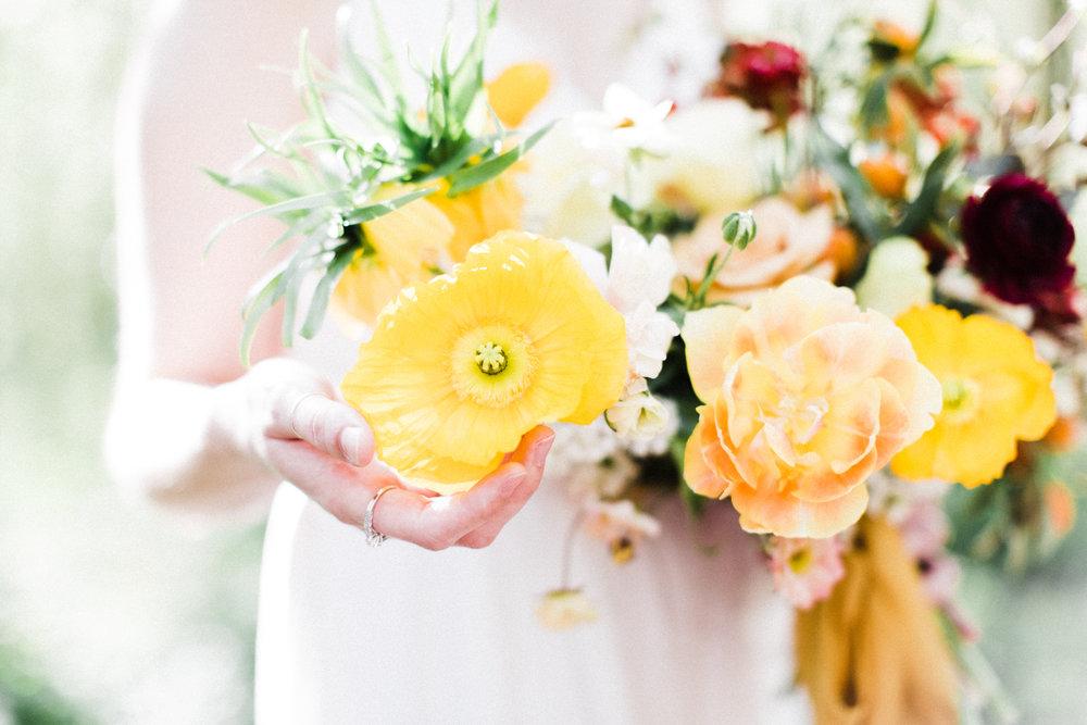 rosencrown-photography-foraged-blooms-spring-37.jpg