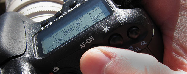 Initialing the Auto-Focus from the back of the camera.
