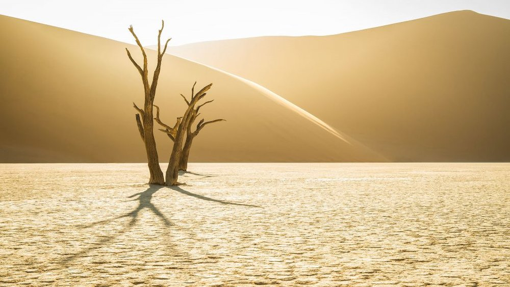 Midas Touch – Deadvlei, Namibia – 1/100s at ƒ/8, ISO 100, Focal Length 33mm