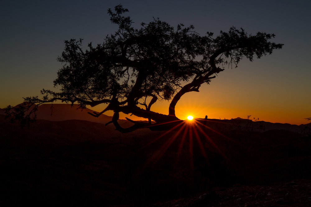 A classic sunset starburst - Hobas, Namibia.
