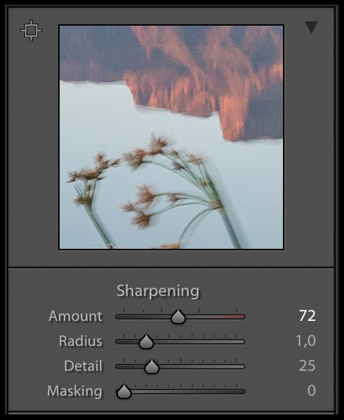 Lightroom's sharpening tools.