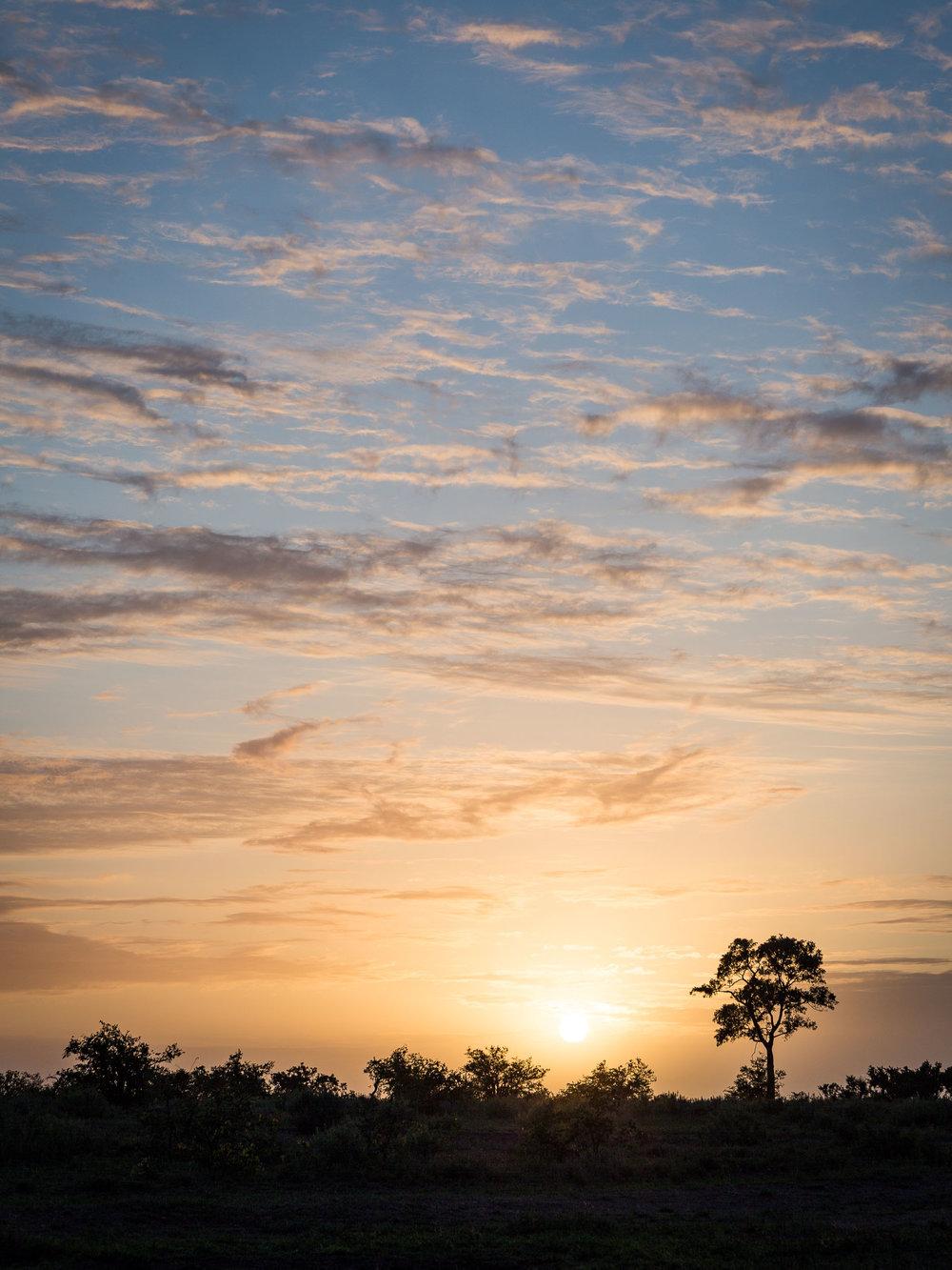 Mooiplaas Sunrise Silhouette