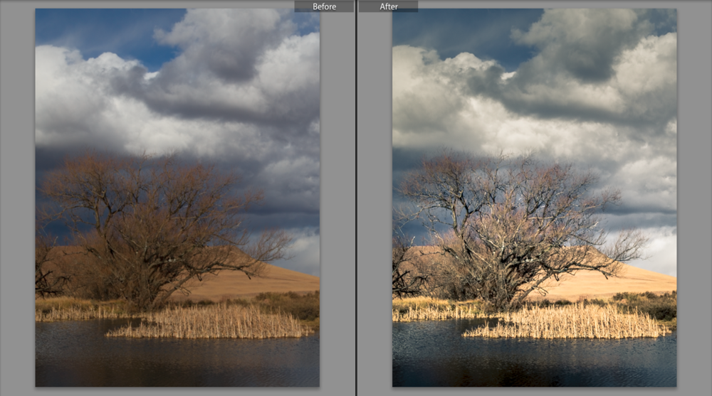 Lightroom's Before and After Screens