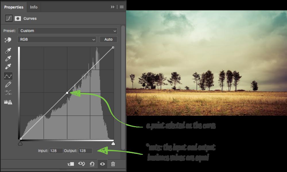 the-anatomy-of-a-curve-adjustment_Curve (Default Values) copy 2.png