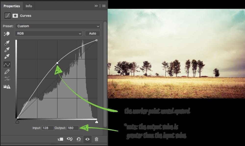 the-anatomy-of-a-curve-adjustment_Curve (Default Values) copy 3.png