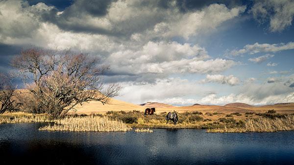 Basotho Horses take a drink near Jonathan's Lodge, Sehlabathebe National Park.
