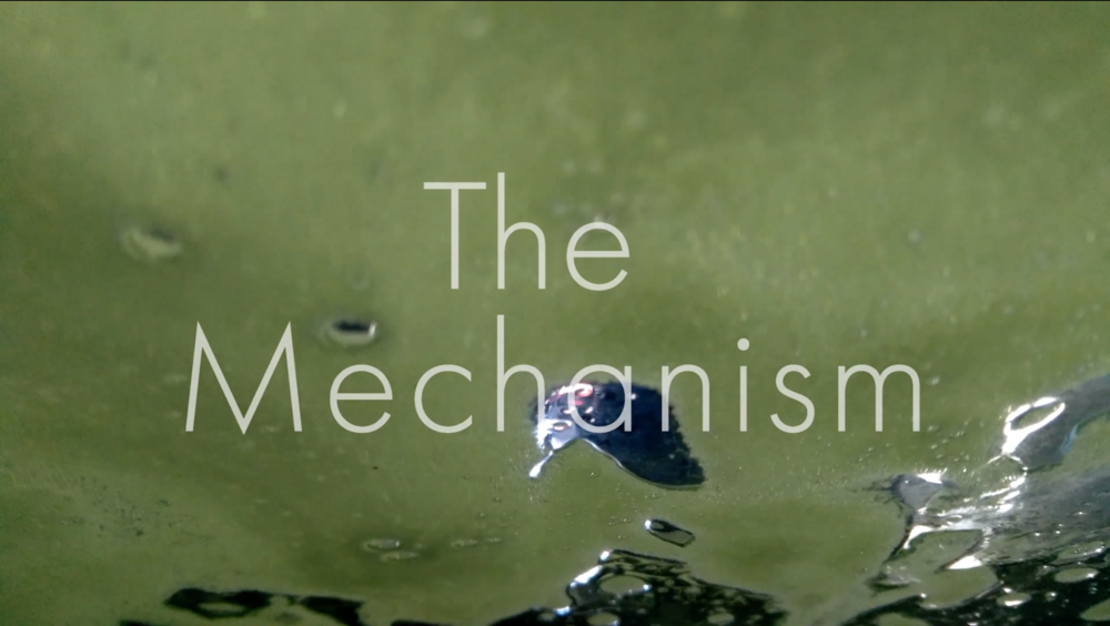 Nathan Gray, T he Mechanism , 2017, screening at Testing Grounds throughout November 2017, during opening hours.     IN 1901 a mysterious device is found in a Roman shipwreck of the island of Antikythera. In 1974 a science fiction author has a revelation that reality is an illusion controlled by an ancient roman machine called the Black Iron Prison. In 2028 a prominent technologist gives a press conference to announce he has died and is addressing his audience from an augmented reality network called  After-life . This complex narrative weaves together historical research, philosophical enquiry and speculation on future events.      The Mechanism  is a new Short Film By Nathan Gray that juxtaposes narration over hypnotic video shot in Greece, Germany and Australia. It was developed over the last 3 months with the help of ZK/U, Berlin and The Forum for Sensory Motion.