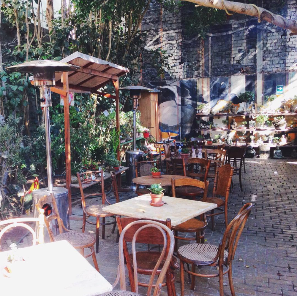 Barranco Dedalo Cafe