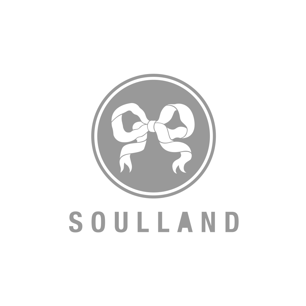 Logos_small_grey_soulland.png