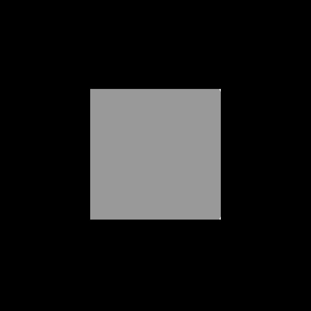 Logos_small_grey_sas.png