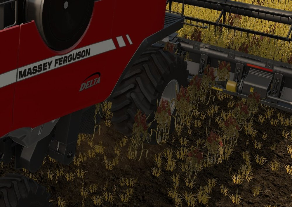 Cutter effect glitch on Massey. a bit hard to see but look at crop running alongside the combine and through the header