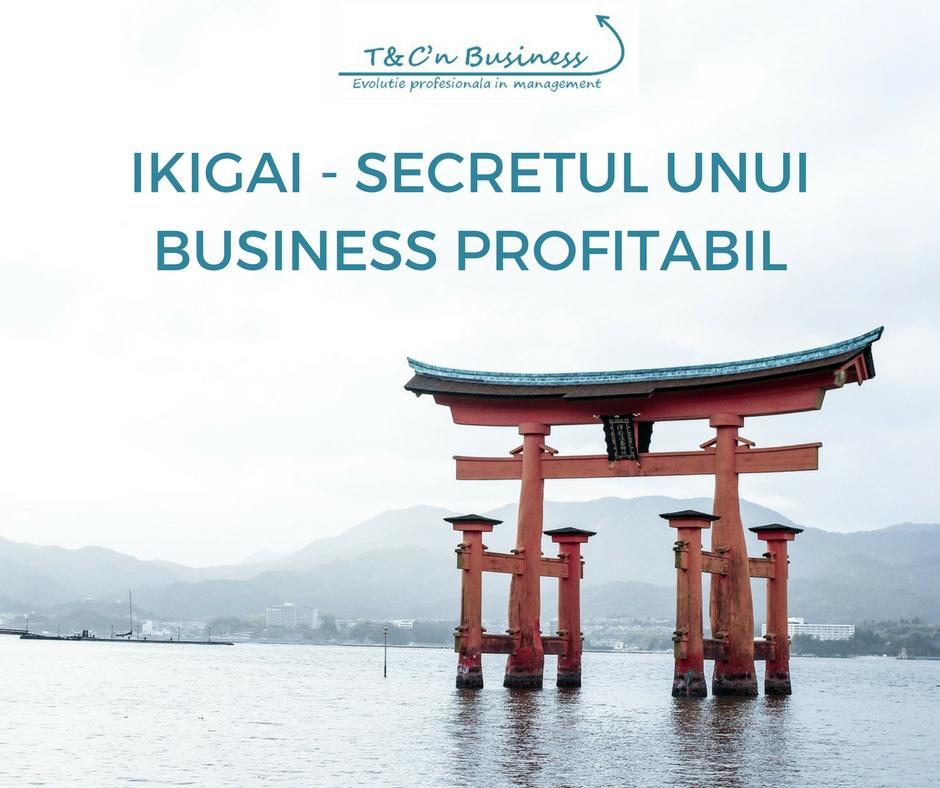 IKIGAI - SECRETUL UNUI BUSINESS PROFITABIL.jpg