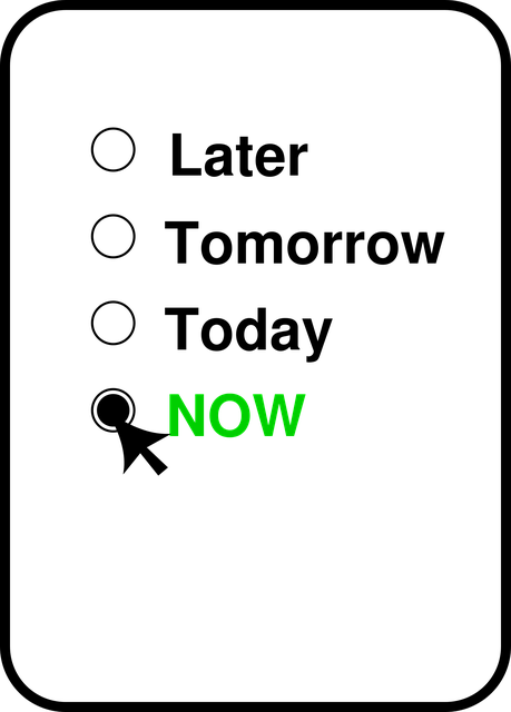 Fotografie oferita de site-ul   https://pixabay.com