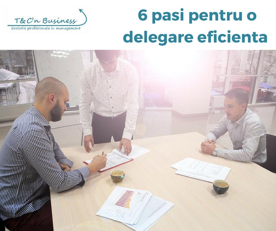 6 pasi pentru o delegare eficineta.jpg