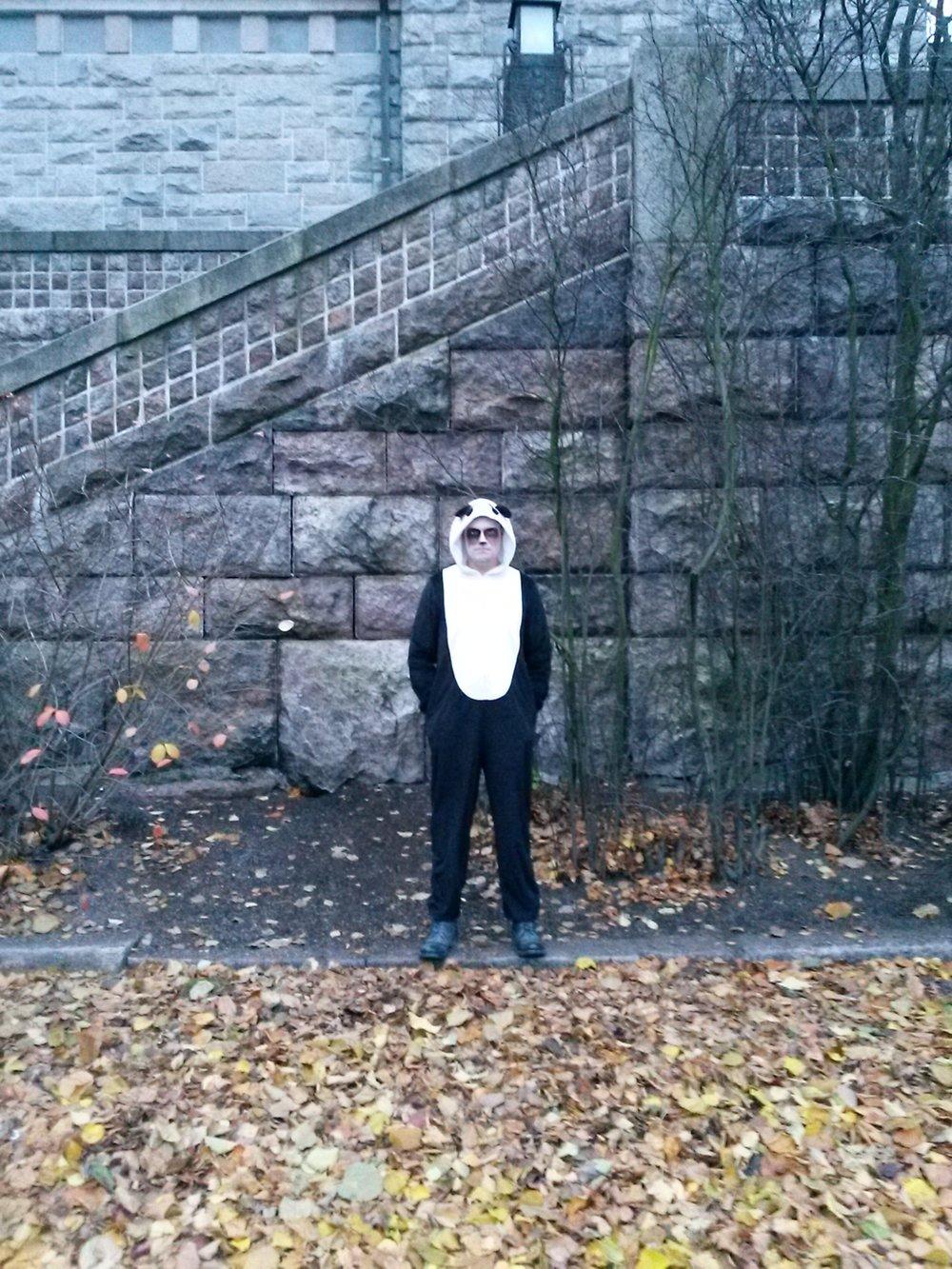 Panda, panda, näytä sarvesi, onko huomenna pouta