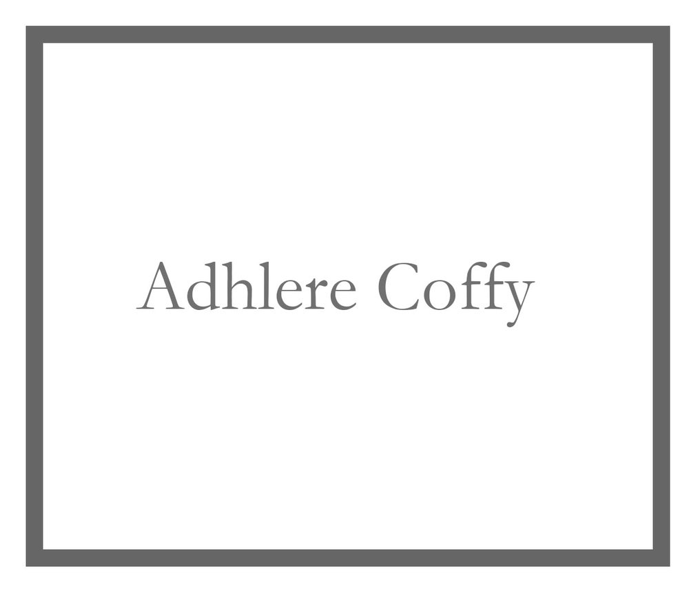 Adhlere Coffy   Data Analyst, Fairfield County's Community Foundation