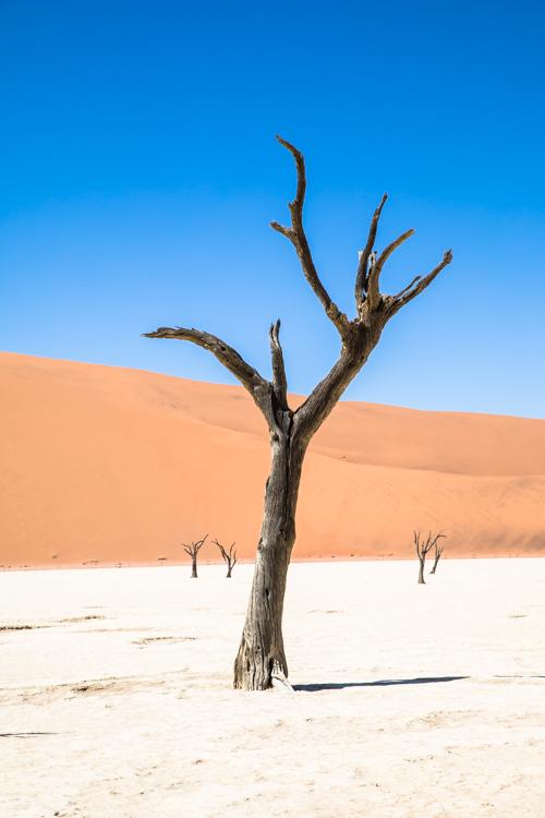 Namibia-7669.jpg