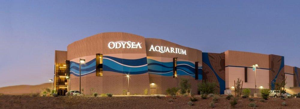 OdySea Aquarium in Scottsdale, Arizona
