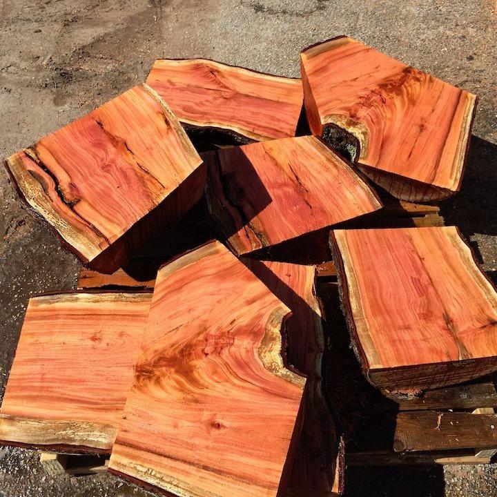 Cuban mahogany