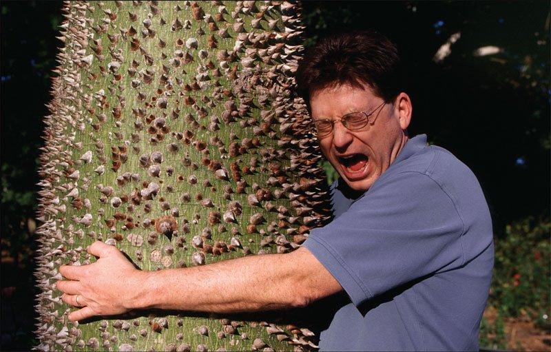 treehugger3.jpg