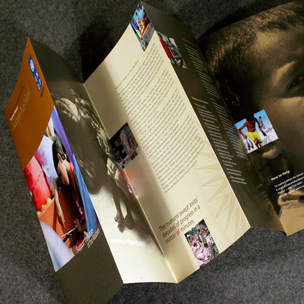 UNDP_AAI_Before_brochure_2x.png