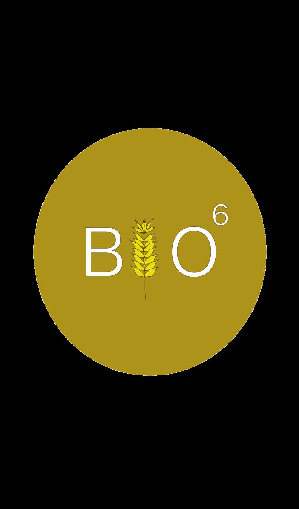 bio6logo.png