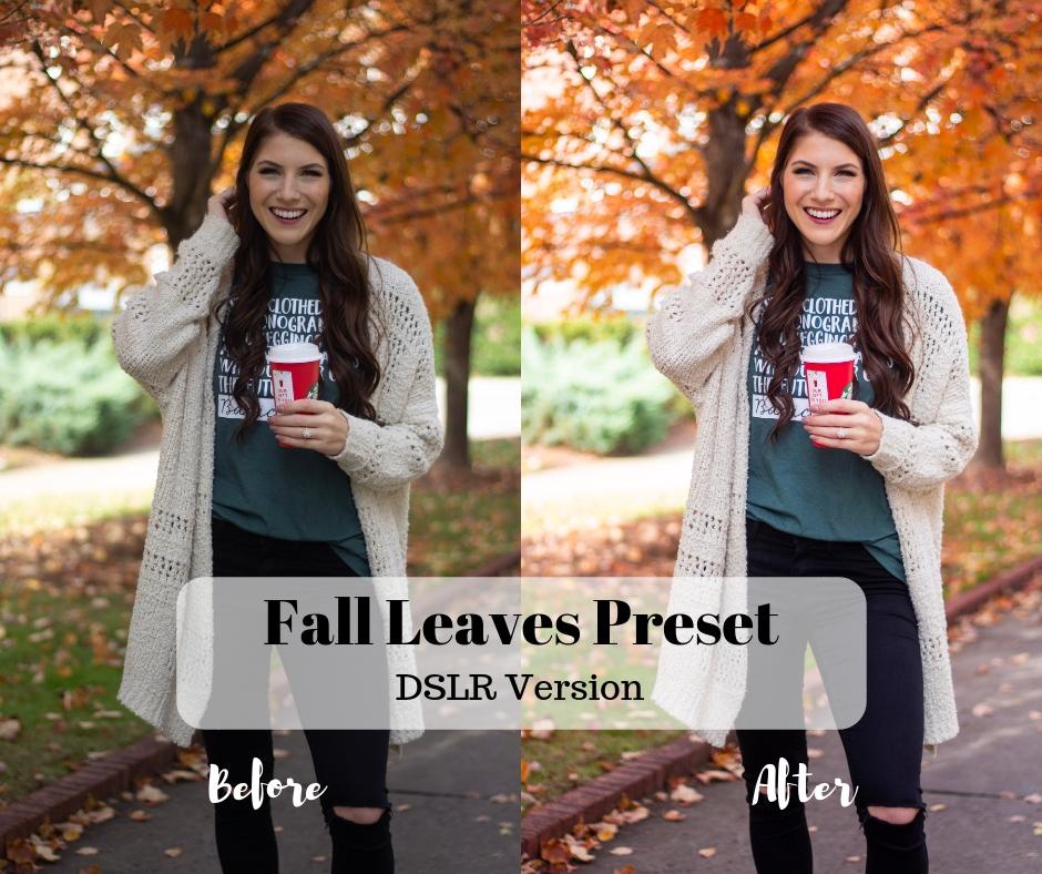 Fall Leaves Preset.jpg