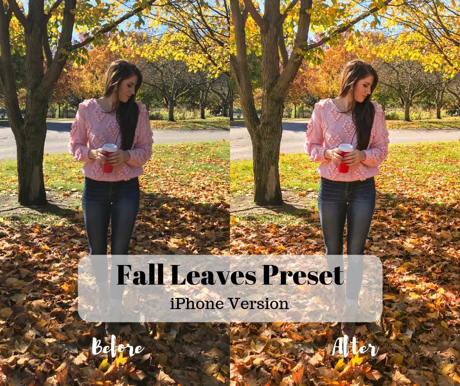 Fall Leaves Preset (1).jpg