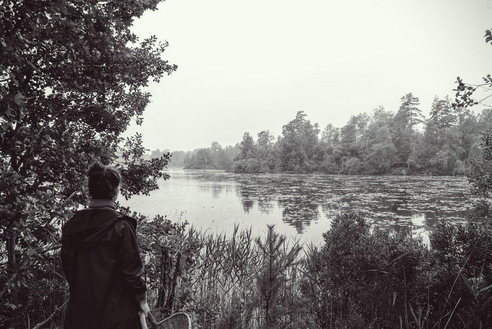 Udsigt over søen - klar til svampejagt