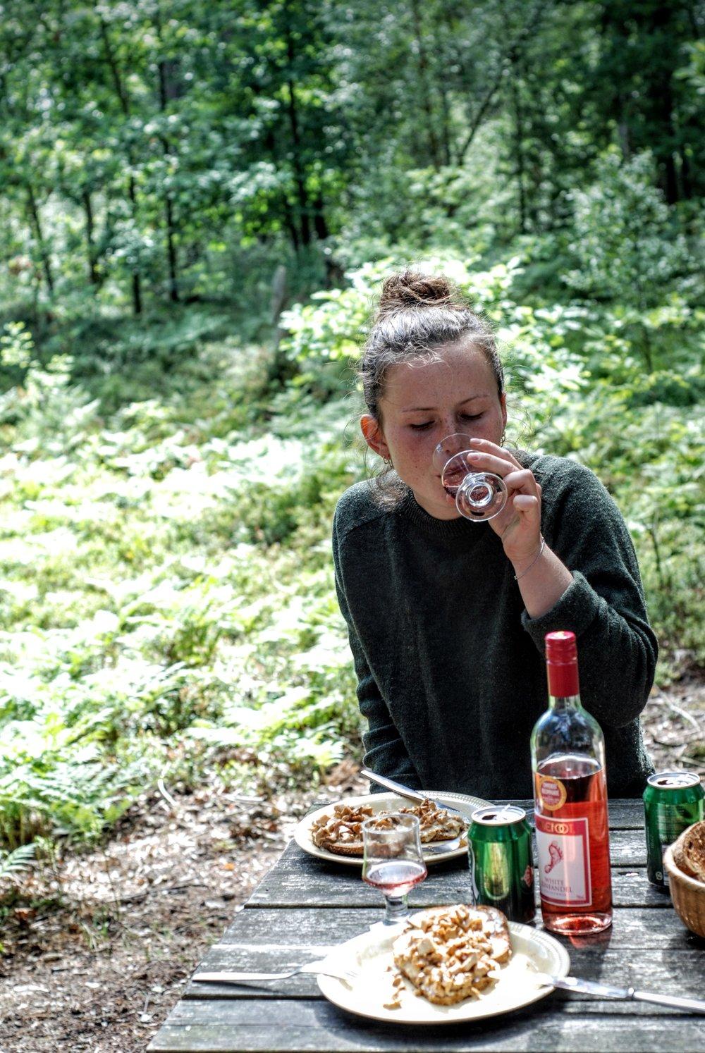 Frokost med rosévin og stuvede svampe.