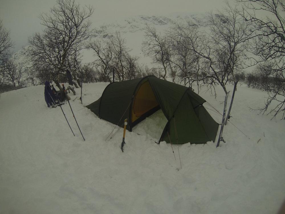 I en skov, midt i sneen. Jotunheimen, vinter 2016