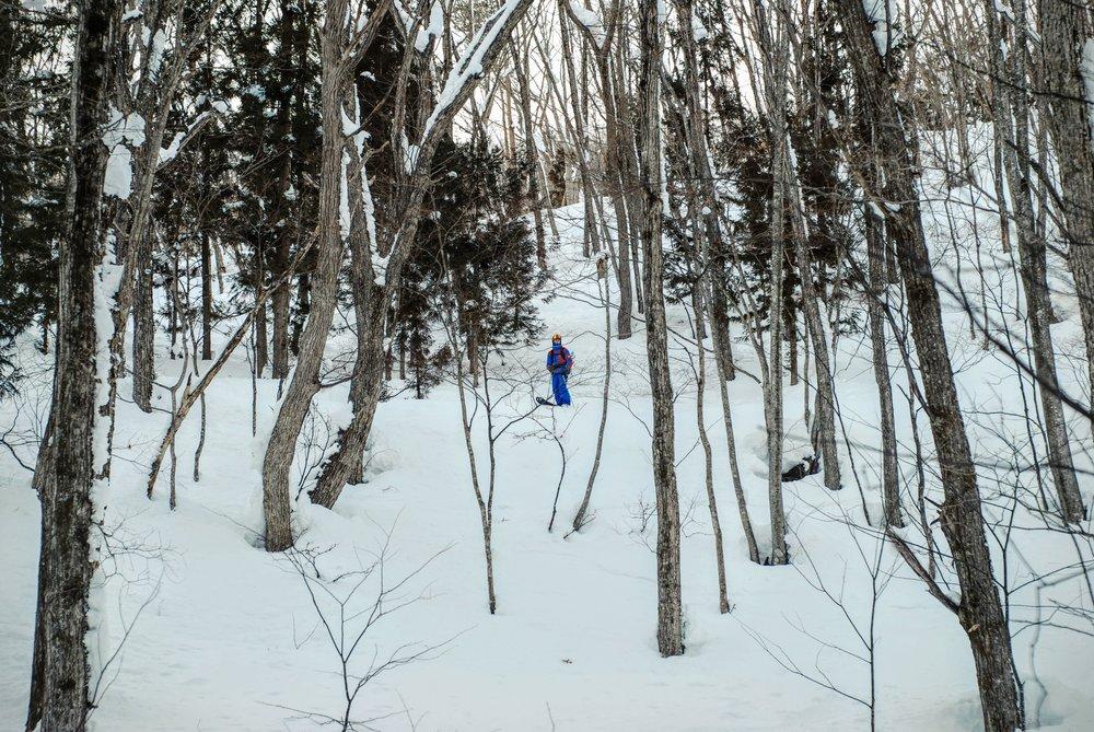 Jeg forsøger at spotte en linje i den tunge sne  Foto_ Philippe Leonard