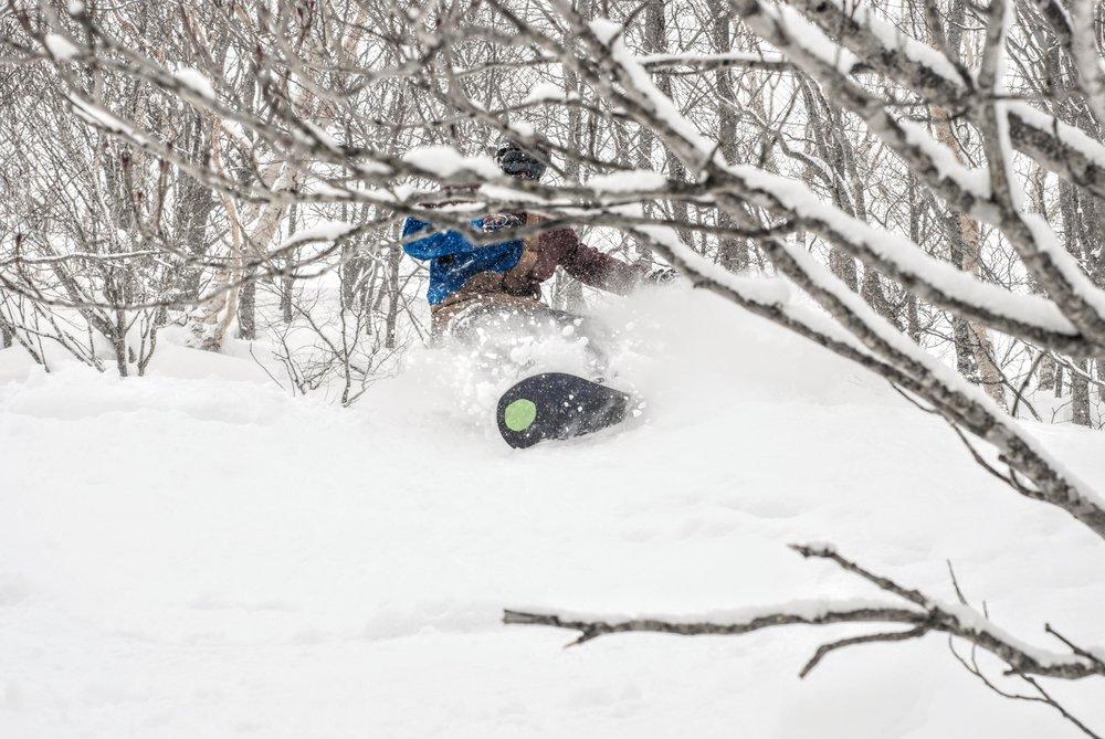Daniel Curtis smider nogle sving i sneen