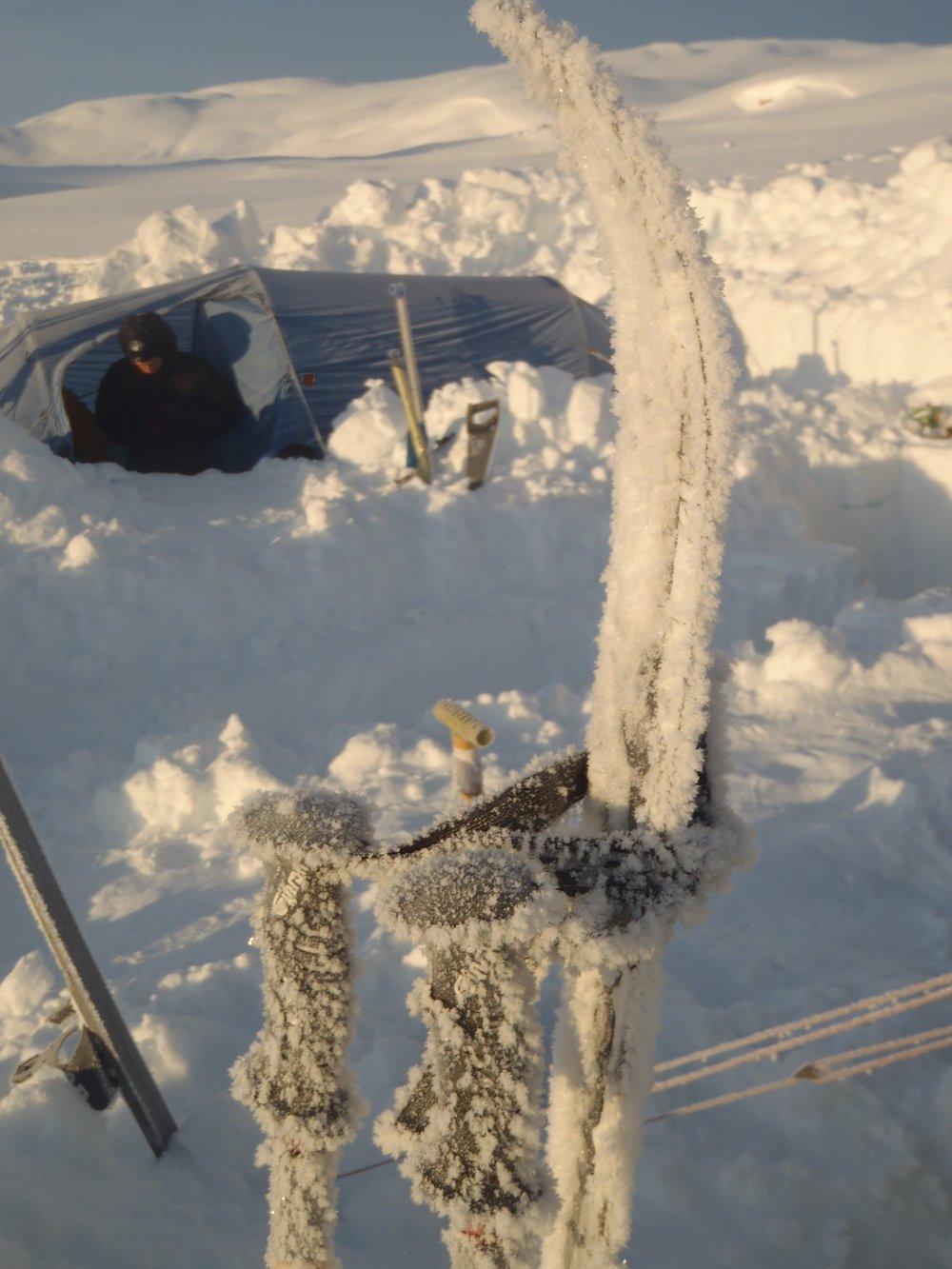 En nat i tåge og mange minusgrader, betyder flotte iskrystaller på udstyret om morgenen  Foto: Line Skov