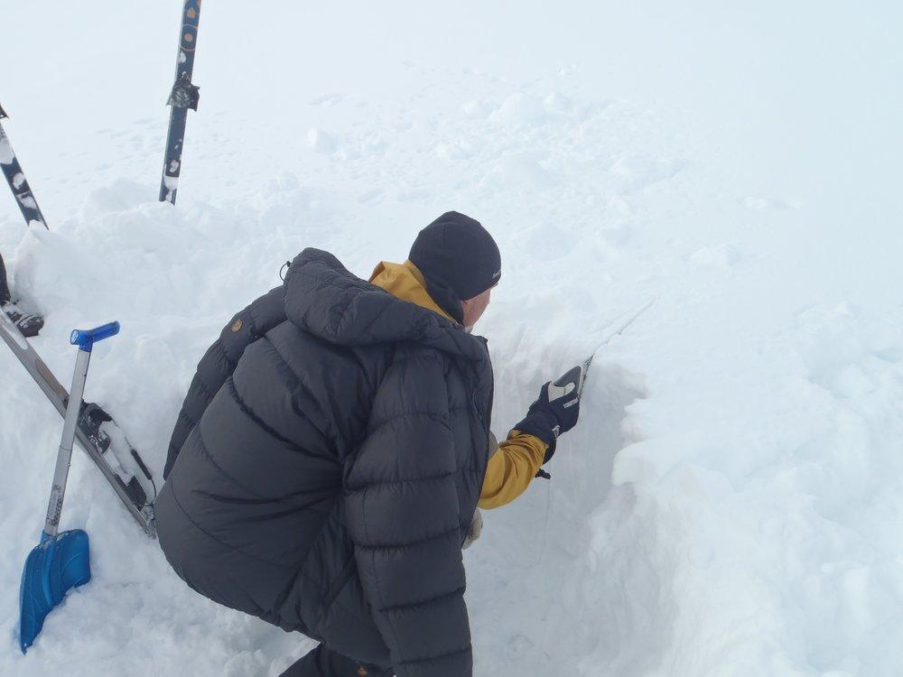 Hver dag gravede vi en sneprofil - her er Noah igang.  Foto: Line Skov
