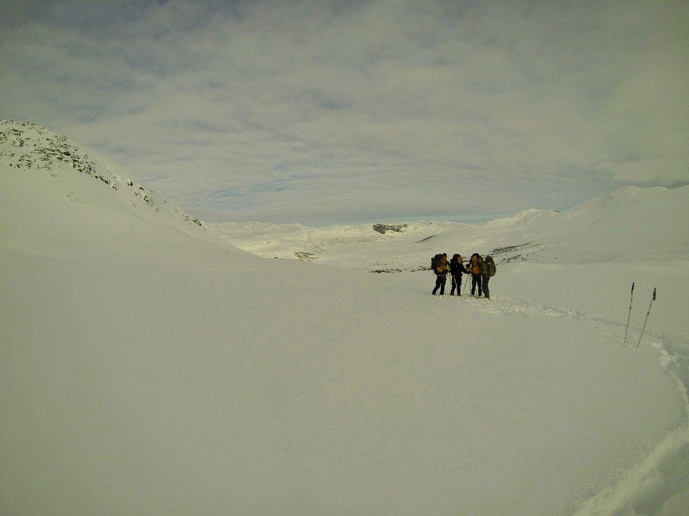 Mislykket gruppebilelde i  Dingledalen  med udsigt over  Olefjorden. De sorte klipper er  Oleberge.