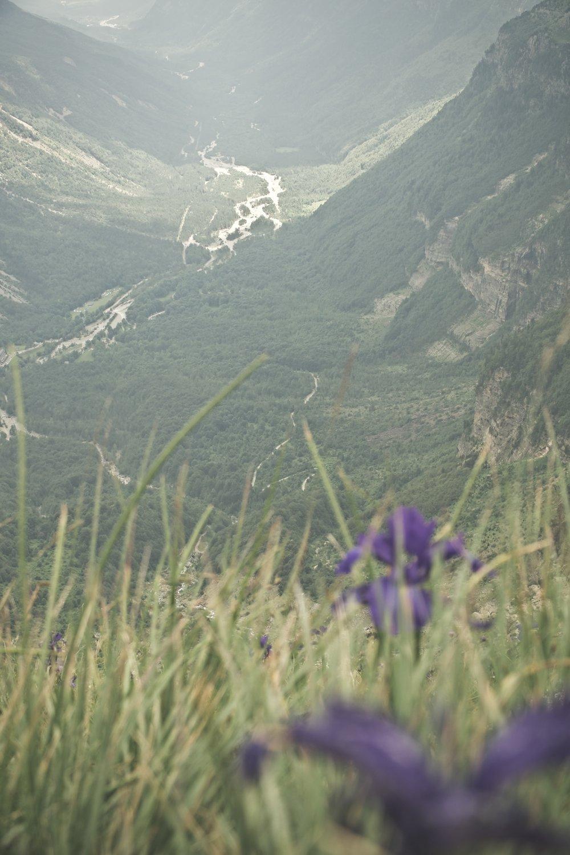 Udsigt over  Pineta -dalen